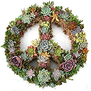 """18"""" Peace Sign Living Wreath Sphagnum Moss Form Complete 2"""