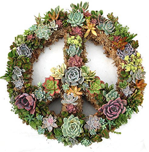 18-Peace-Sign-Living-Wreath-Sphagnum-Moss-Form-Complete