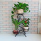 ZGP @Plant stand Iron Flower Pot Rack, 3 Tiered Plant Display Stand Bonsai Holder Home Garden Patio Decor Shelf Holds Black/White (Color : B, Size : 665025CM)