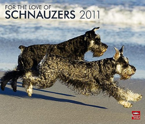 For the Love of Schnauzers 2011 Deluxe Wall Calendar