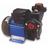 Kirloskar 0.25 HP Domestic Water Motor Pump Tiny 63