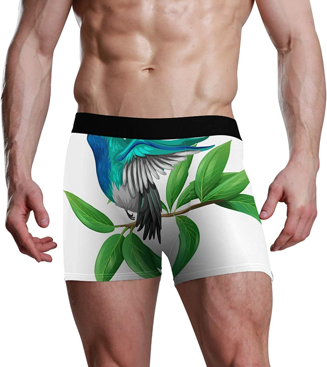 ATZUCL Mens Underwear Elastic Boxer Briefs Colourful Hummingbird Soft Breathable S for Men