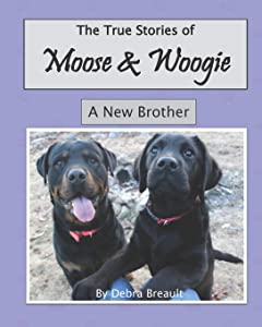 Sweepstakes: Moose and Woogie: A New Brother