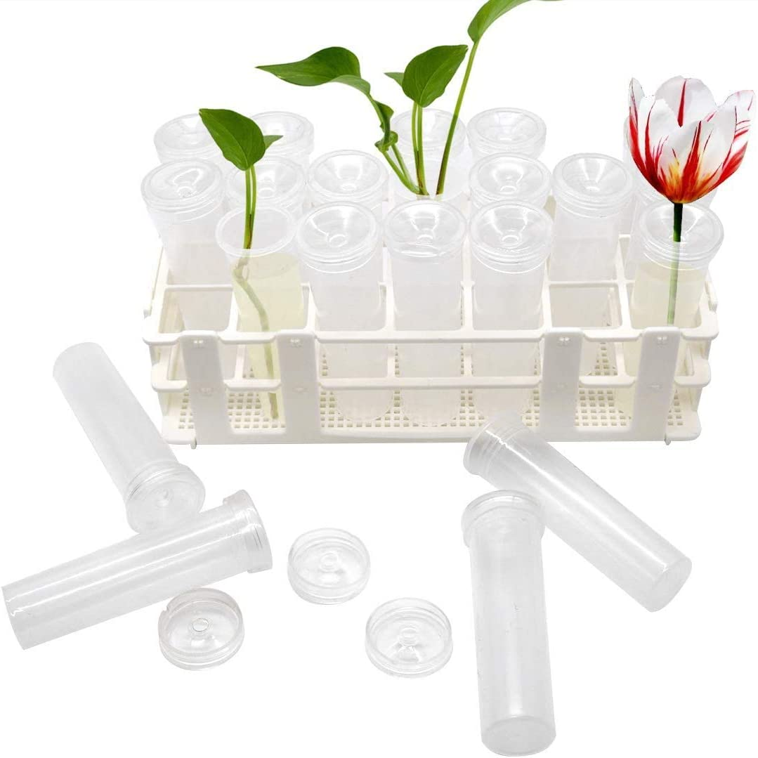 Plastic Flower Vials with Caps 0.7 x 2.8 inch D x H Clear Green Floral Water Vials for Milkweed Stem Cuttings Flower Arrangements LISHINE 200 Pcs Floral Water Tubes