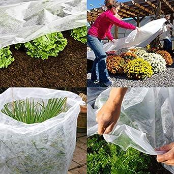Tela protectora para plantas del jardín en invierno Elixir contra el frío, la helada y el viento, 2 m de ancho, 5 a 50 m: Amazon.es: Amazon.es