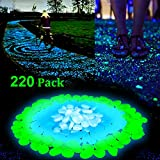 Homder 220pcs Glow in the Dark Garden Pebbles for Walkways & Decor and Plants in Blue & Green & White