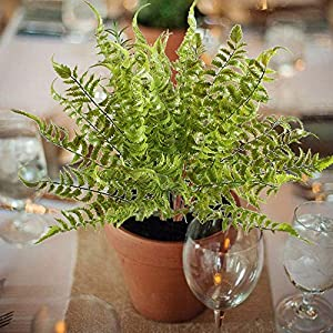 2 PCS Boston Fern Artificial Green Plants Fake Plastic Leaves Waterproof Shrubs Mimosa Venus Fern Persian Grass for Outdoor Home Table Kitchen Office Decorations 3