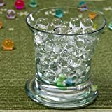 Greentimeszone 1 Pound Bag of Crystal Clear Transparent Gel Soil Reusable Water Beads Pearls Wedding Party Centerpiece
