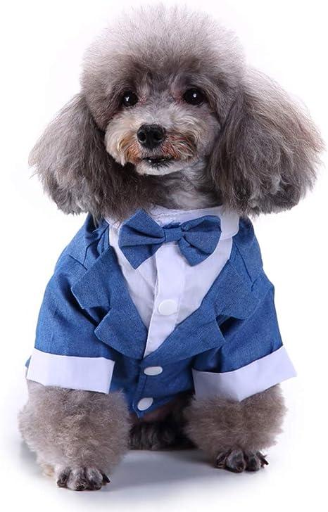Lovejoy Store - Traje de Esmoquin para Perro, para Perro, Boda ...