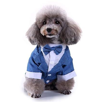 Lovejoy Store - Traje de Esmoquin para Perro, para Perro ...
