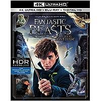 Fantastic Beasts & Where to Find Them (4K + Blu-Ray + Digital)