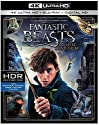 Fantastic Beasts & Where To Find Them (2pc) [Blu-Ray ULTRA HD]