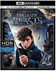 Cover Image for 'Fantastic Beasts and Where to Find Them (4K Ultra HD + Blu-ray + Digital HD)'
