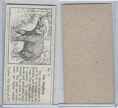 T0-0 Typhoo Tea, Wild Animals, 1955, 3 Elephant