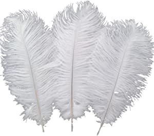 Ostrich Feathers Plume for Wedding Centerpieces Home Decoration Pack of 10pcs 35-40cm Black Sowder 14-16inch