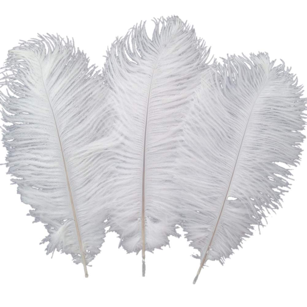 Sowder 10pcs Ostrich Feathers 12-14inch(30-35cm) Plume Home Wedding Decoration(white)