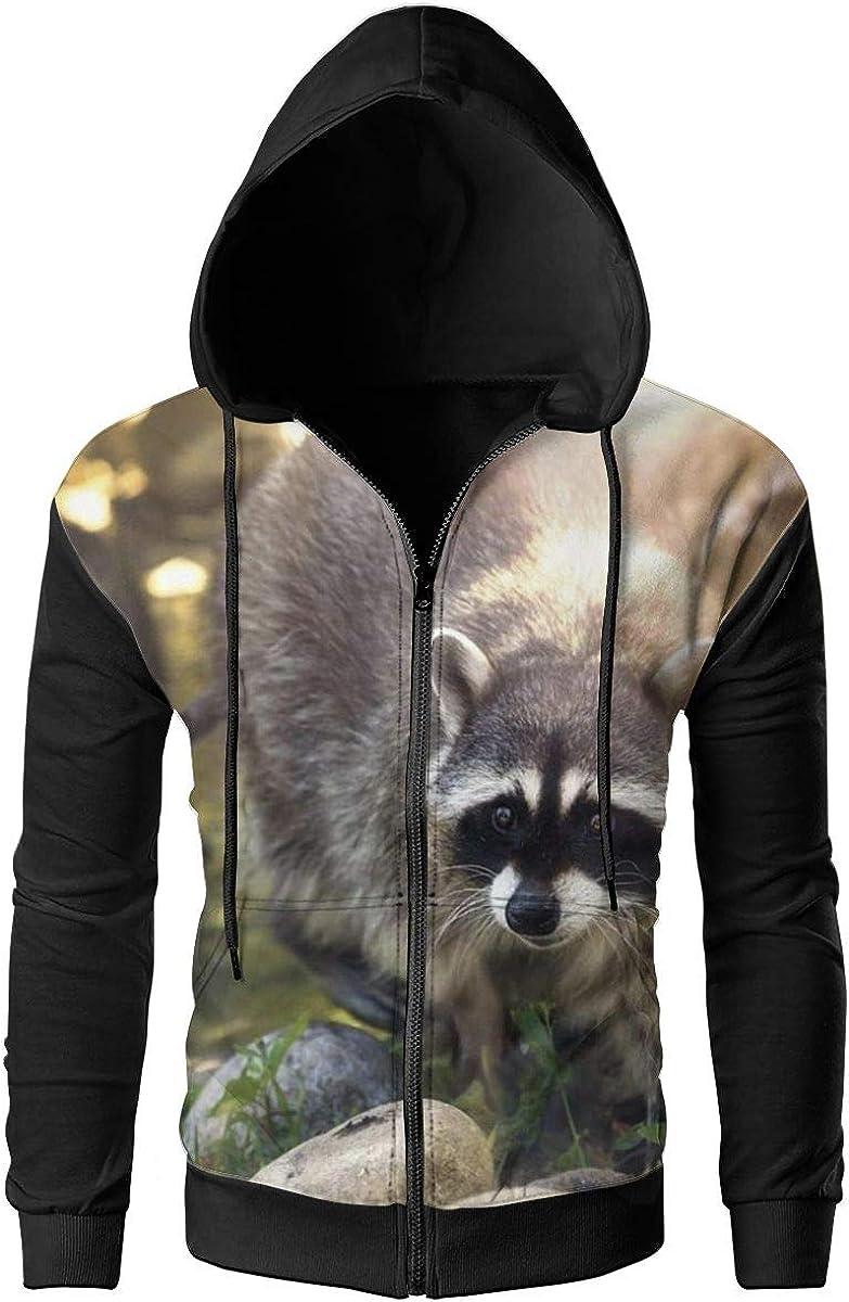 Raccoon Animal Kids Fashion Popular Hooded Hoodies With Pocket