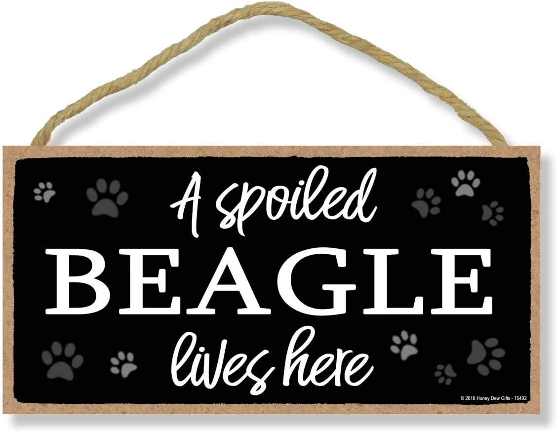 Honey Dew Gifts A Spoiled Beagle Lives Here 5 inch by 10 inch Hanging Dog Sign, Wall Art, Decorative Wood Sign Home Decor, Beagle Gifts