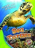 sea turtles ocean life up close blastoff readers level 3
