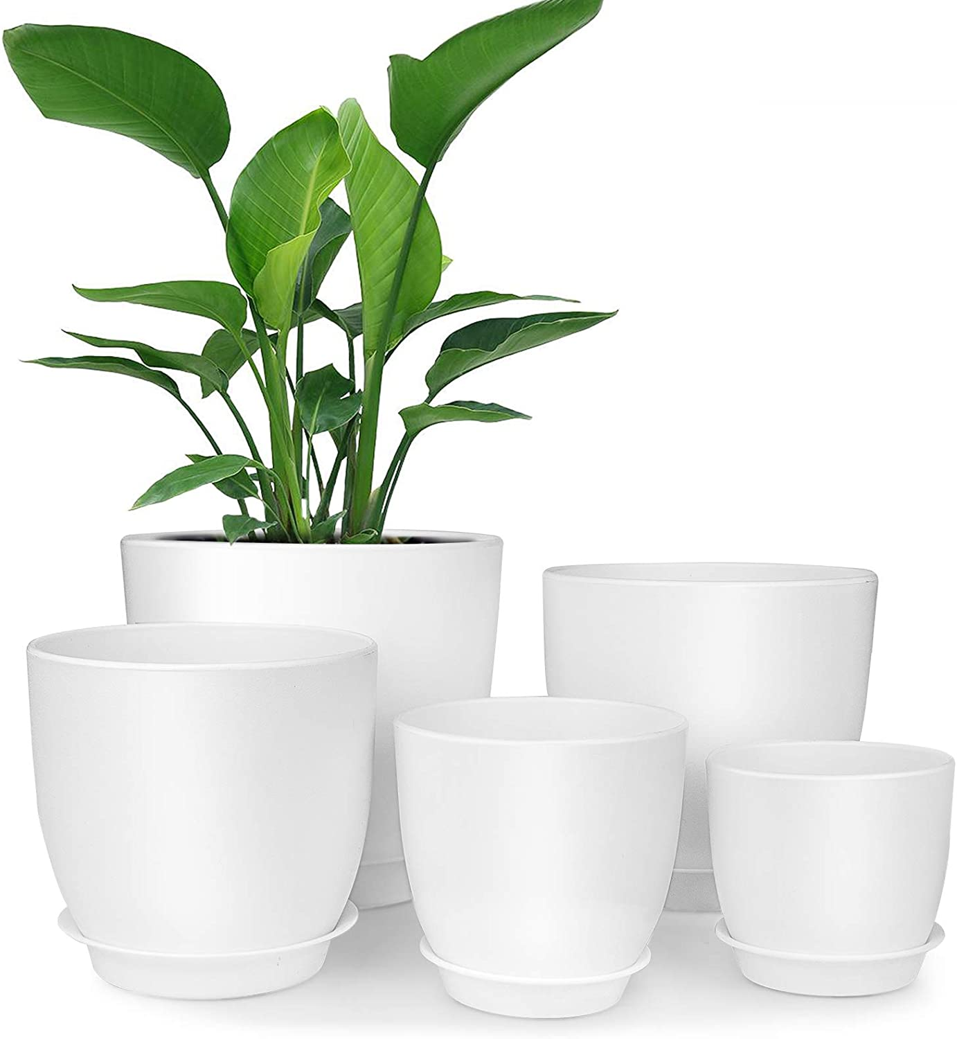 Plastic Planter, HOMENOTE 7/6/5.5/4.5/3.5 Inch Flower Pot Indoor Modern Decorative Plastic Pots for Plants with Drainage Hole and Tray for All House Plants, Succulents, Flowers, and Cactus, White: Kitchen & Dining