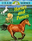 Horses and Ponies (Draw Science)