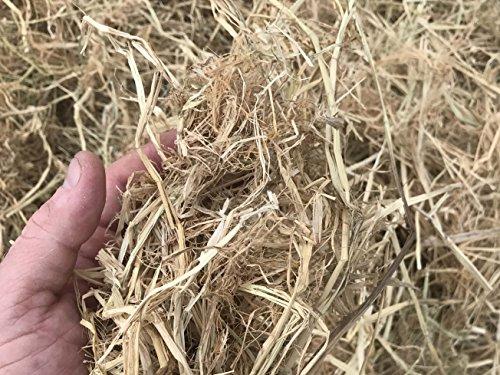(MIGHTY109 Rice Straw Mulch - 30 quarts Plus 10 Free quarts)