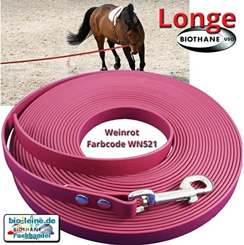Longe Longierleine f/ür Pferde 16mm aus Beta BioThane/® 5 bis 10 Meter lang in 25 Farben Pferdelonge f/ür Reitsport