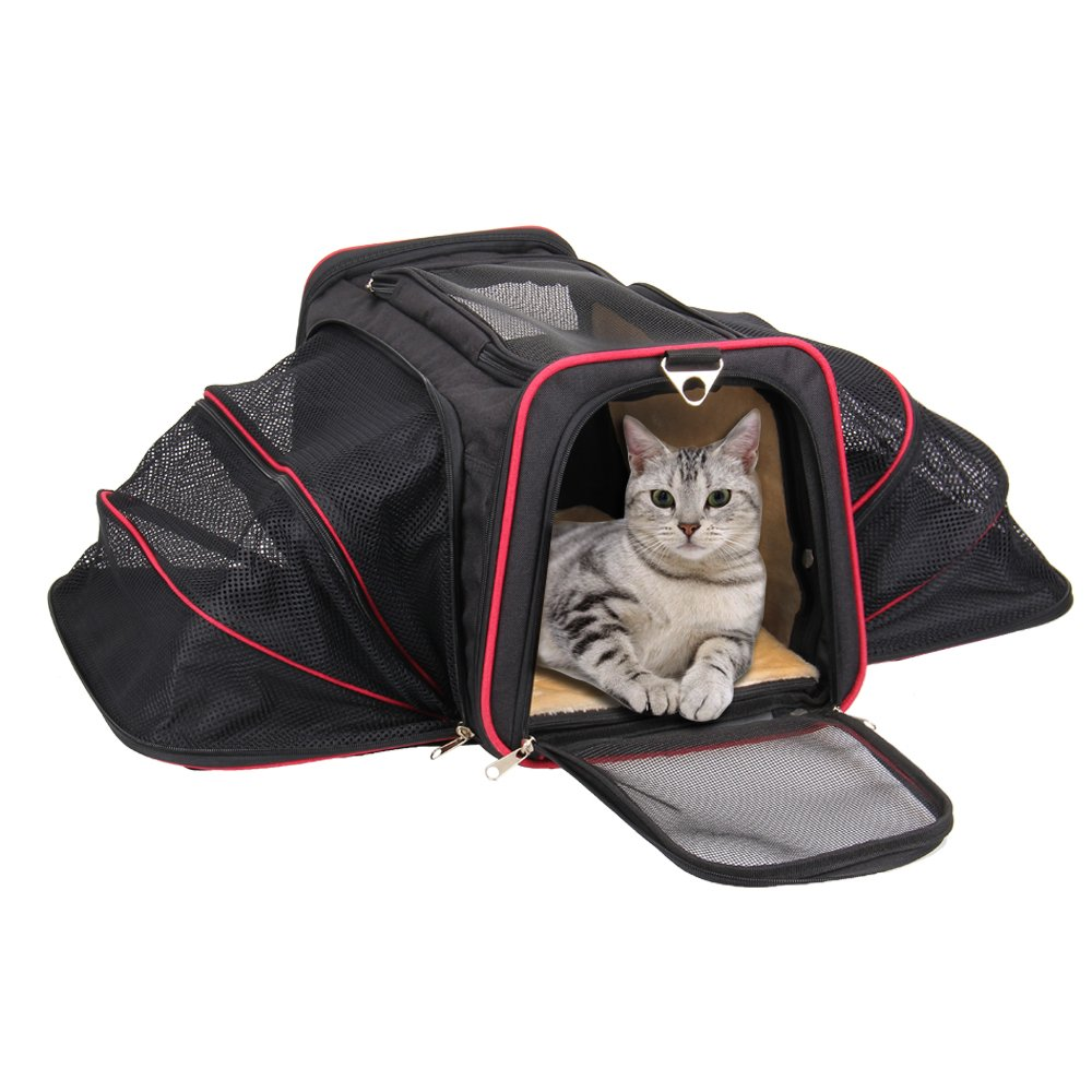 Airline Approved Cat Carrier – KiddyWoof Small Pet Carrier Travel Dog Purse Bag, Portable Soft Sided Cat Carrier with Two Side Expandable for Little Animals, Rabbit, Kitties, Kitten and Puppy