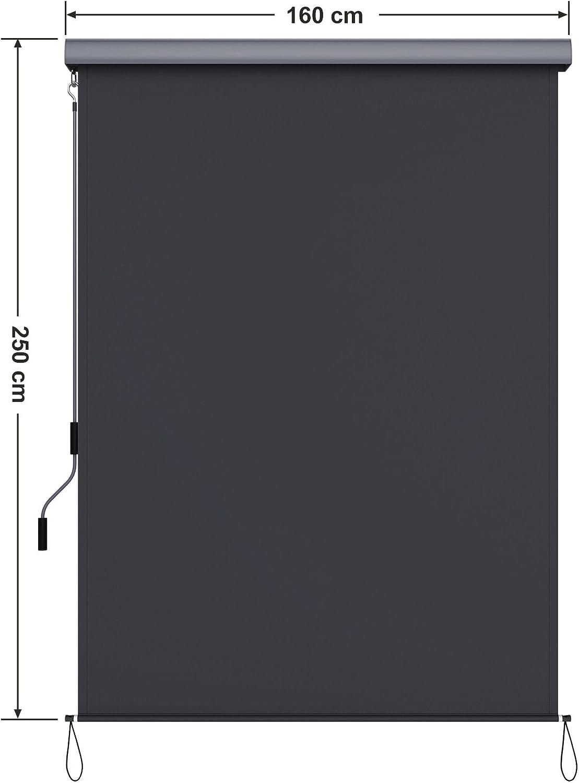 Protezione Ideale da Vento Sole e per la Privacy con Alloggiamento Grigio SONGMICS 1,4 x 2,5 m Tenda Verticale per Balcone Terrazzo e Esterni Impermeabile Grigio Fumo GSA145GY