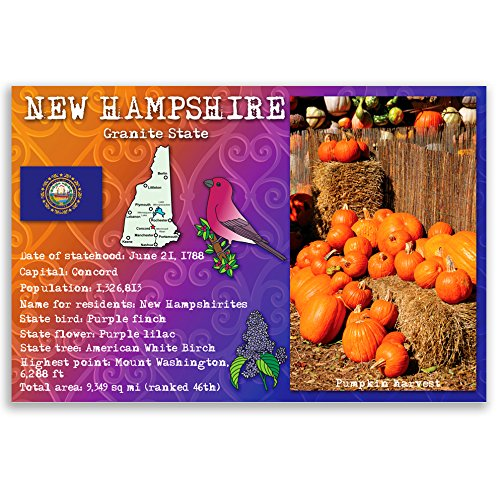 NEW HAMPSHIRE STATE FACTS postcard set of 20 identical postcards. Post cards with NH facts and state symbols. Made in ()