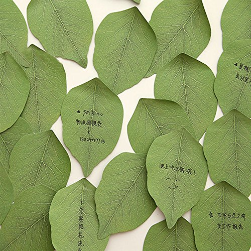 Translucent Pvc Card (ARCTURUS 10PCS Korean Creative Leaf Shape Cute Sticky Notes Post It Memo Pad Note Paper)