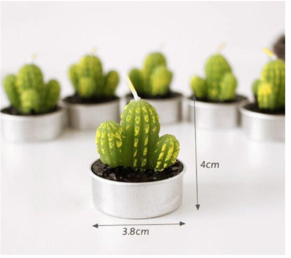 Amazon.com: Zabrina 6 Pcs Cactus Mini Candles, Novetly Super Cute ...