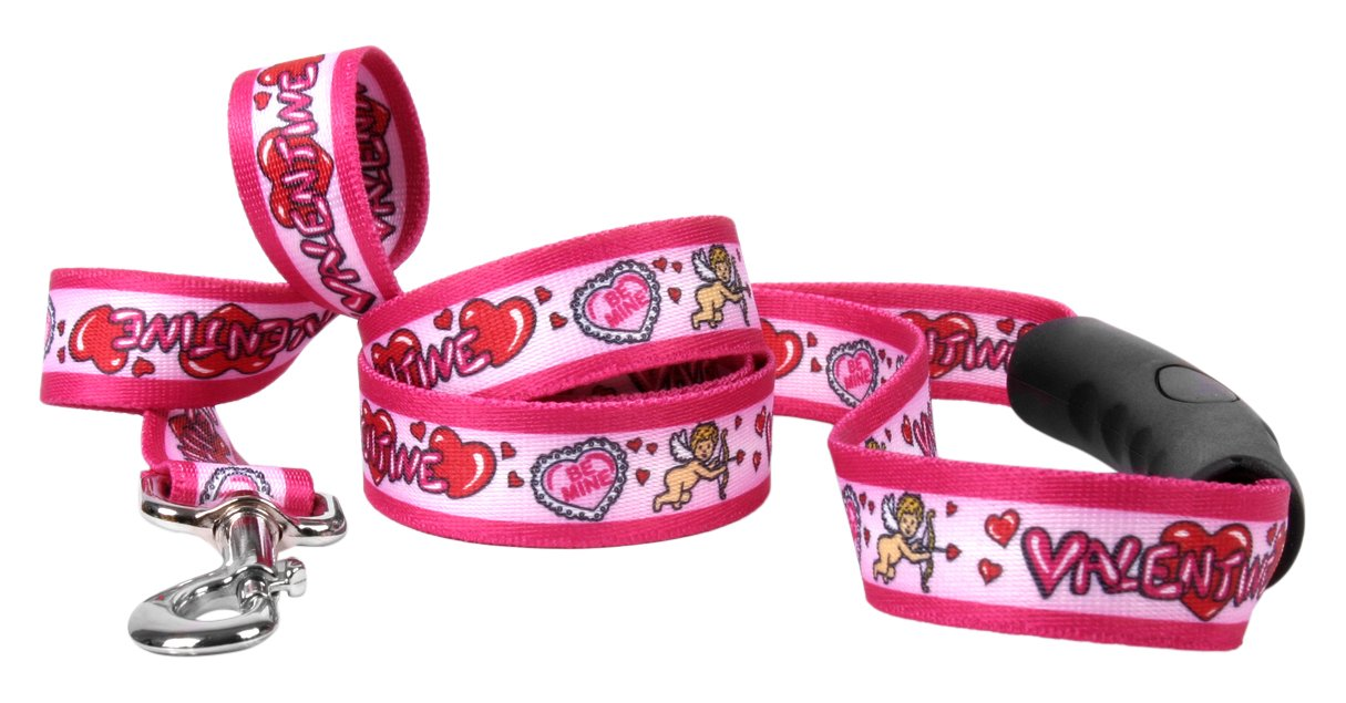 Yellow Dog Design Be My Valentine Ez-Grip Dog Leash with Comfort Handle 1'' Wide and 5' (60'') Long, Large
