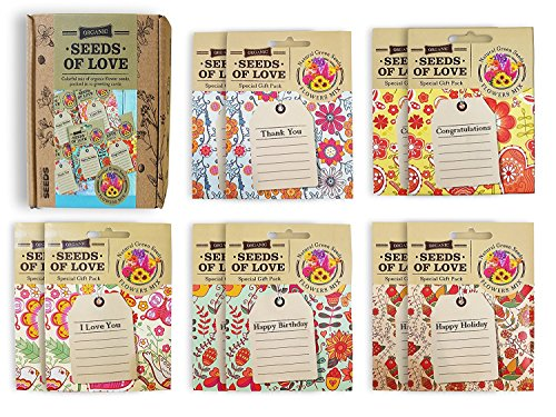 Seeds of Love: Organic Flower Seed Packet Greeting Cards, Natural Non-GMO Seeds, With Greeting and Blank Lines, Perfect Gift for Birthdays, Mother's Day, Christmas, Office Party or Holiday. (10 Pack)