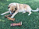 Healthy Stuffed Shin Bone for Dogs – Large Filled Dog Bones for All Breeds – Digestible & Nutritional Meaty Pet Treats for Aggressive Chewers