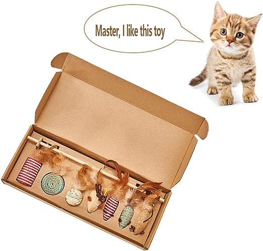 DXIA Juguetes para Gatos, Juguete del Gato, Caja de Regalo del Juguete del Gato, 7 Piezas Juguete Interactivo para Gatos con Plumas para Kitty, 7 Piezas de reemplazable Juego de Regalo: Amazon.es: