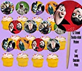 HOTEL TRANSYLVANIA Movie Double-Sided Cupcake Picks Cake Toppers -12 pcs