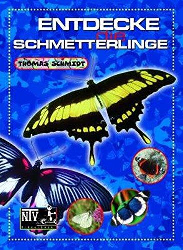 Entdecke die Schmetterlinge (Entdecke - Die Reihe mit der Eule)