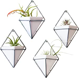 EnoElk Hanging Triangle Wall Planters and Ceramic Vases with Screws, Set of 4 (Silver)