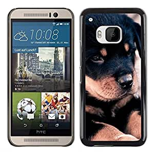 Be Good Phone Accessory // Dura Cáscara cubierta Protectora Caso Carcasa Funda de Protección para HTC One M9 // Rottweiler Retriever Puppy Black Dog