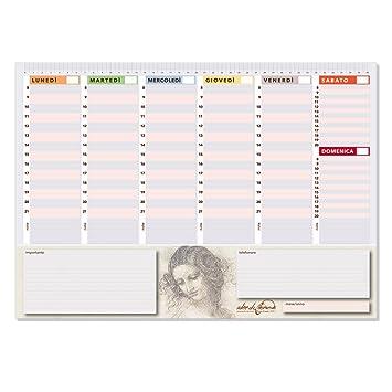 Planificador semanal de 42 x 30 cm, agenda con planificador ...