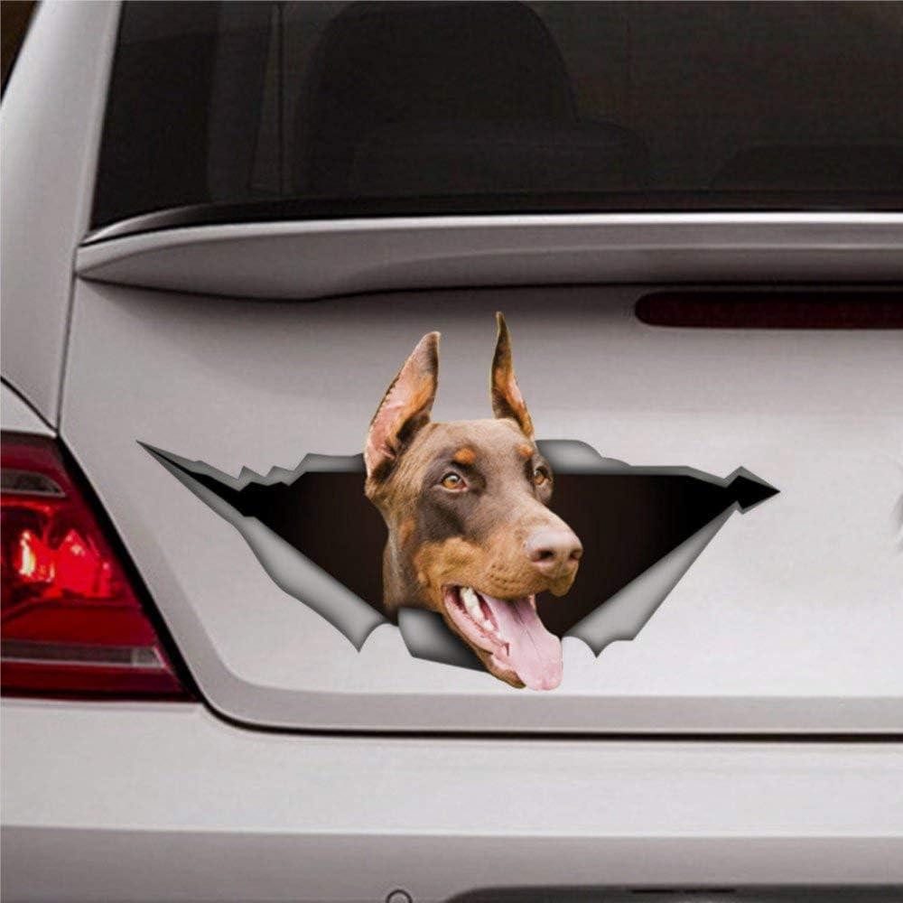 DONL9BAUER Brown Doberman Dog Car Stickers Vinyl Auto Scratch Cover 3D Sticker Car Decal for Laptop Travel Case Tumbler Door Window Bumper Luggage Idea