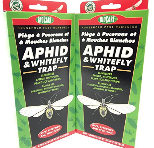 2-pack-biocare-household-pest-remedies-aphid-whitefly-trap-safe-effective-and-non-toxic