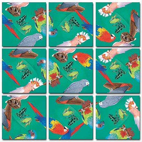 B.Dazzle Scramble Squares: Parrots (Polly Wanna Bird Toy)