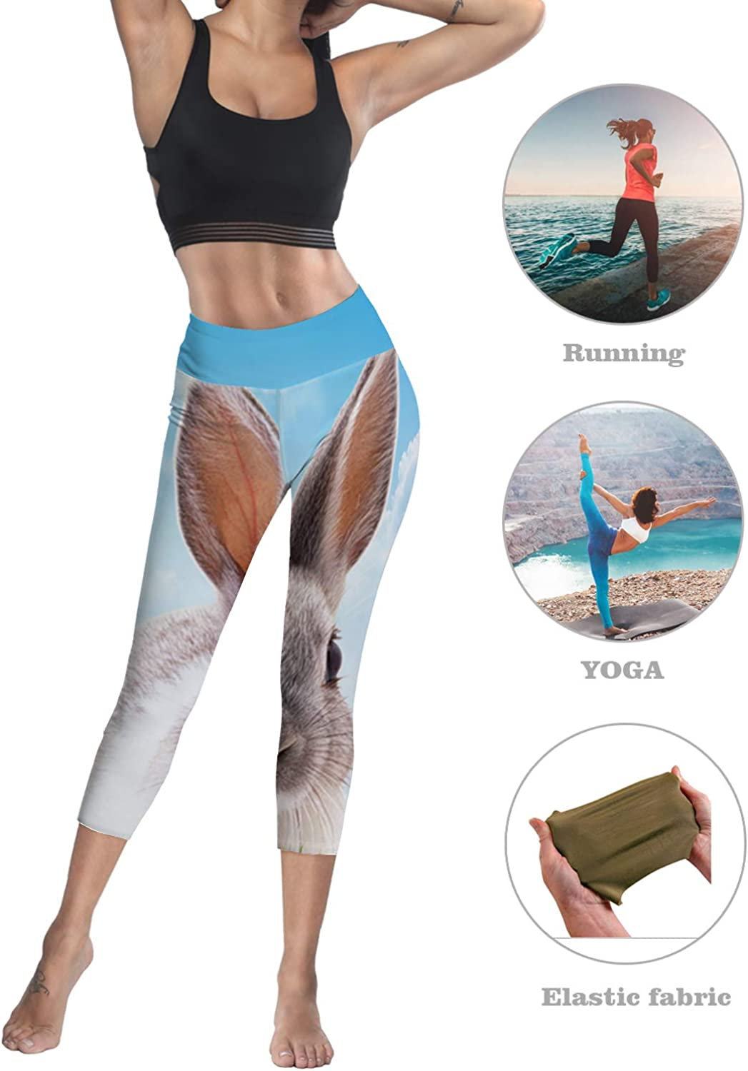 Printed Leggings for Women Colorful Animal Dog Wallpaper with Glasses 3//4 High Waist Yoga Pants Sport Gym Leggings Workout