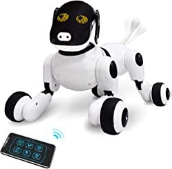 Top 10 Best Robot Pets For Kids (2021 Reviews & Buying Guide) 8