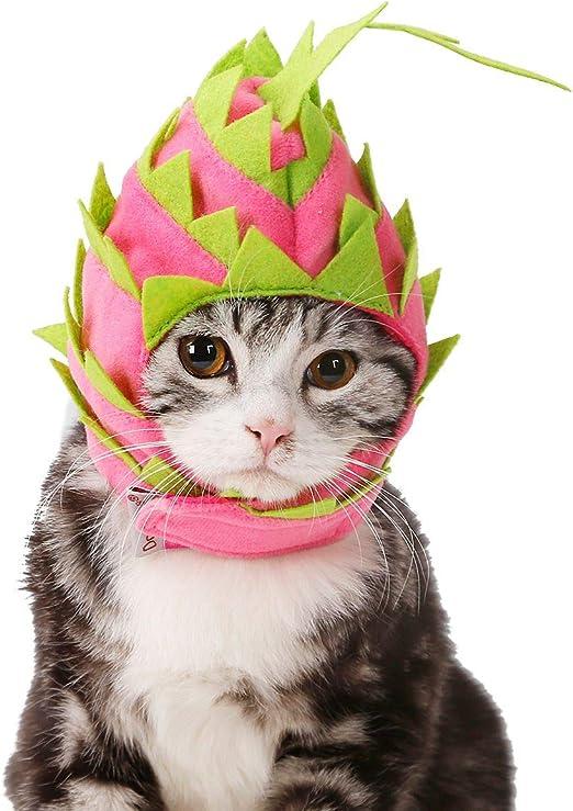 FDCLD Traje Festivo para Mascotas Cachorro Perro Gatos Vestido de Fiesta Gorra Sombreros Accesorios Artículos para Perros Gatos Navidad Pitaya Sombrero 28-42Cm: Amazon.es: Productos para mascotas