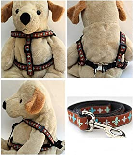 "product image for Diva-Dog 'Napoleon' Custom 5/8"" Wide Dog Step-in Harness with Plain or Engraved Buckle, Matching Leash Available - Teacup, XS/S"