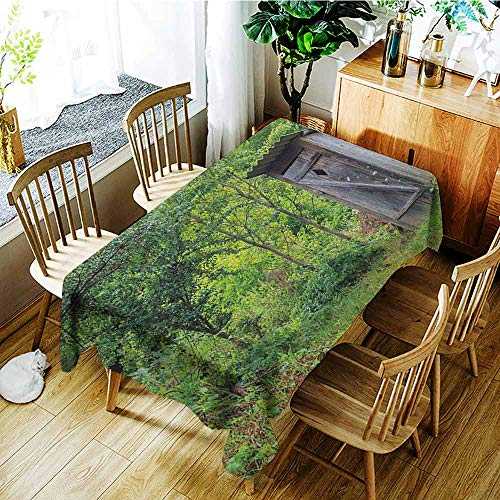 XXANS Washable Tablecloth,Outhouse,Worn Out Cottage Hut in Abandoned Forest Spring Time Vivid Design Image,High-end Durable Creative Home,W54x72L Fern Green and Grey