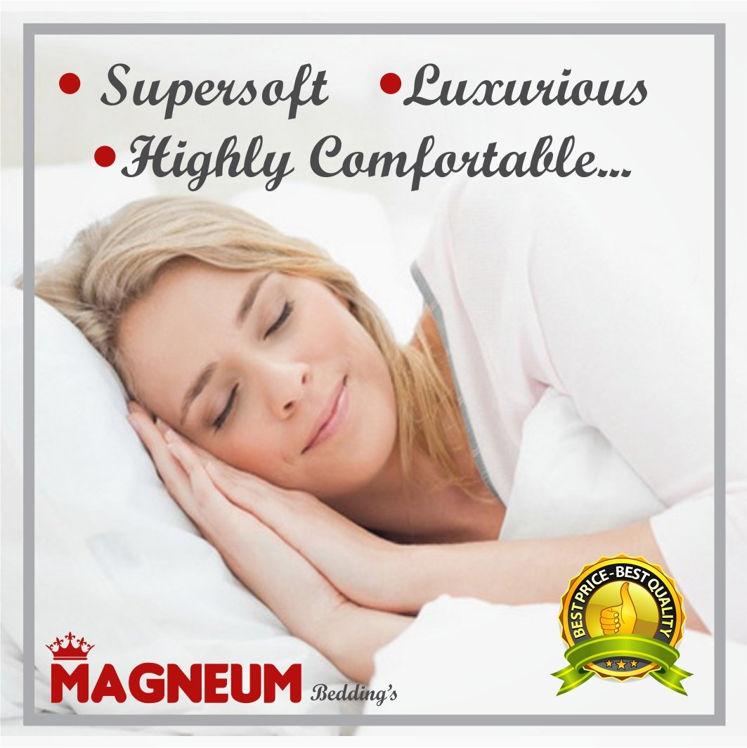 Magneum European Pillowcase Hotel Quality Set of 2 PC Pillow Shams Euro/European 28X28 Size in 500 Thread Count with 100% Egyptian Cotton White Solid
